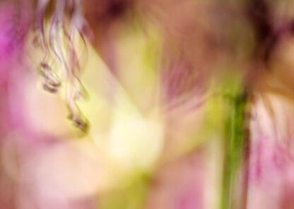 Abstraktes Blumenbild in pink und grasgrünen Tönen