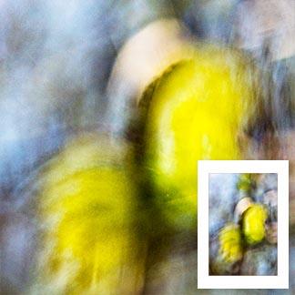 Abstraktes Bild mit zwei grossen, gelben Formen in der Bildmitte