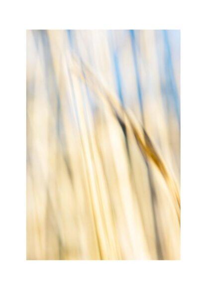 Abstraktes Bild in hellen, freundlichen Ocker- und Blautönen